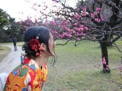 Maya Shinoda / AI-Credit専属ライター