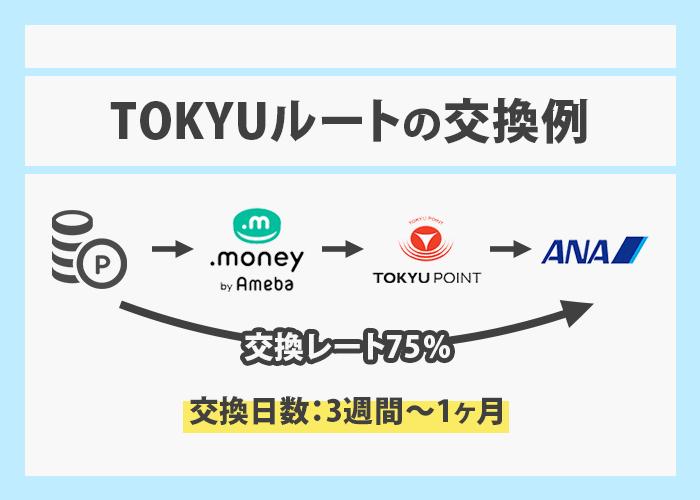 TOKYUルート交換例 イメージ画像